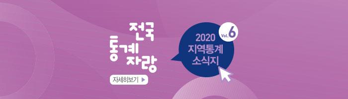 전국 통계자랑 2020 vol.6  지역통계 소식지 자세히보기